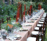 Wine Dinners Catered by Chef's Expressions