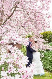 Bride and groom with magnolia blooms, Procopio Photography