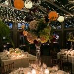 Atrium dining with Chinese lanterns, Bradley Images