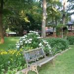 Center circle June garden