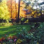 Center Circle garden Fall