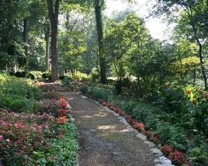 Gardens Lower Path 1