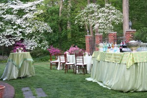 Spring cocktail reception with azaleas