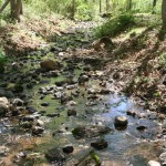 Honeybrook Stream at Gramercy